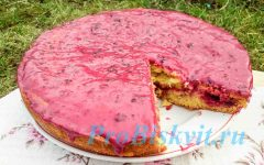 бисквит классический рецепт с фото пошагово
